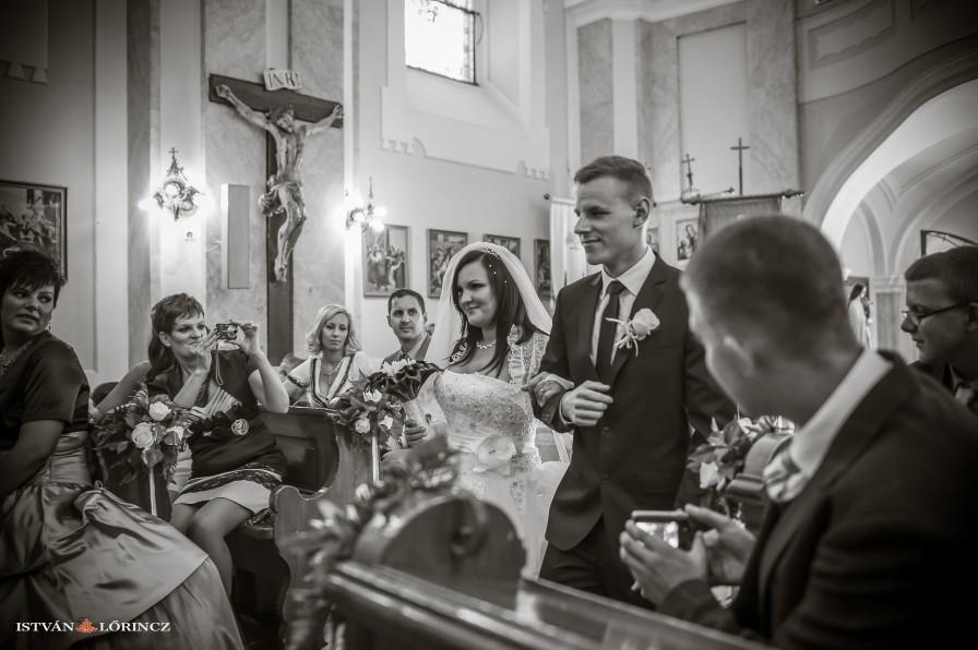 Hochzeit_Forster_3296