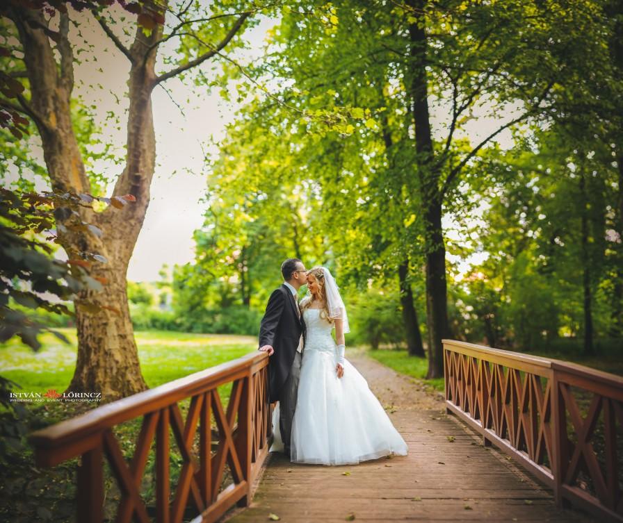 Hochzeit_Merseburg_hp1.jpg