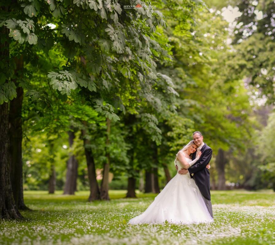 Hochzeit_Merseburg_hp3.jpg
