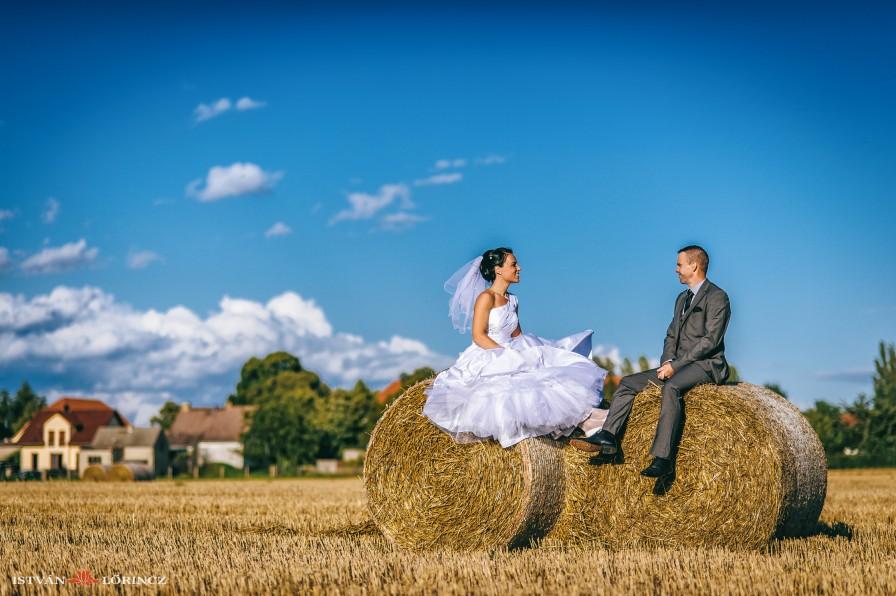 Hochzeit_Spergau_8448